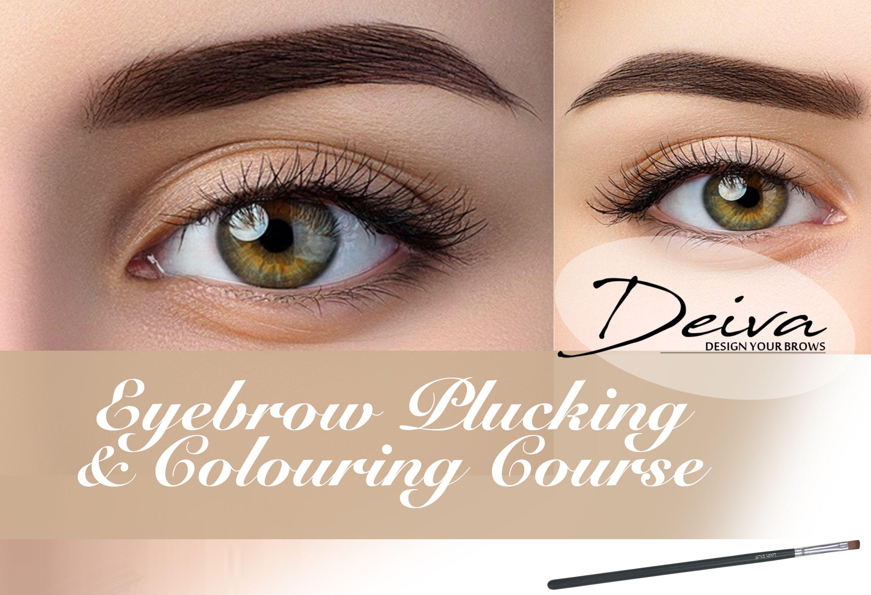 Eyebrow Plucking & Colouring Course